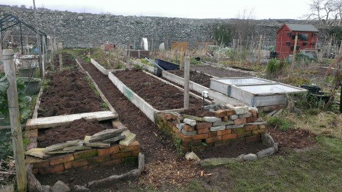 Allotment with new flowerbeds and path upgrade work in progress, early Jan 2014.